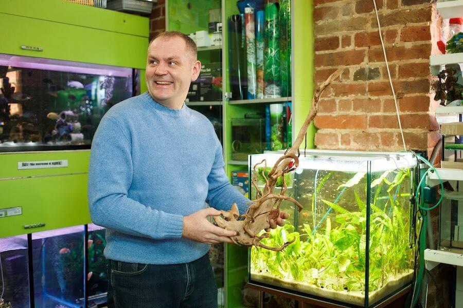 Нова корисна стаття про те, як вибрати корягу для акваріума
