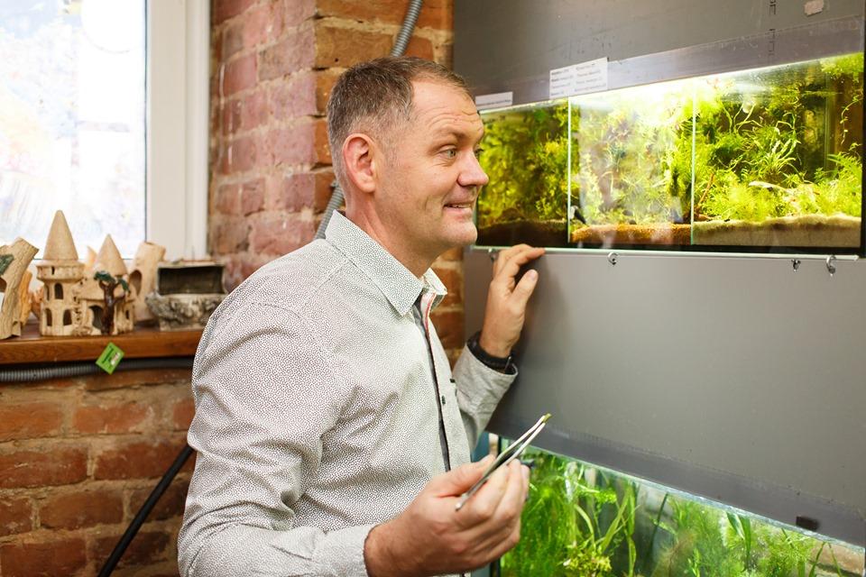 Як оформити акваріум для рибок рослинами так, щоб було гарно і зручно.