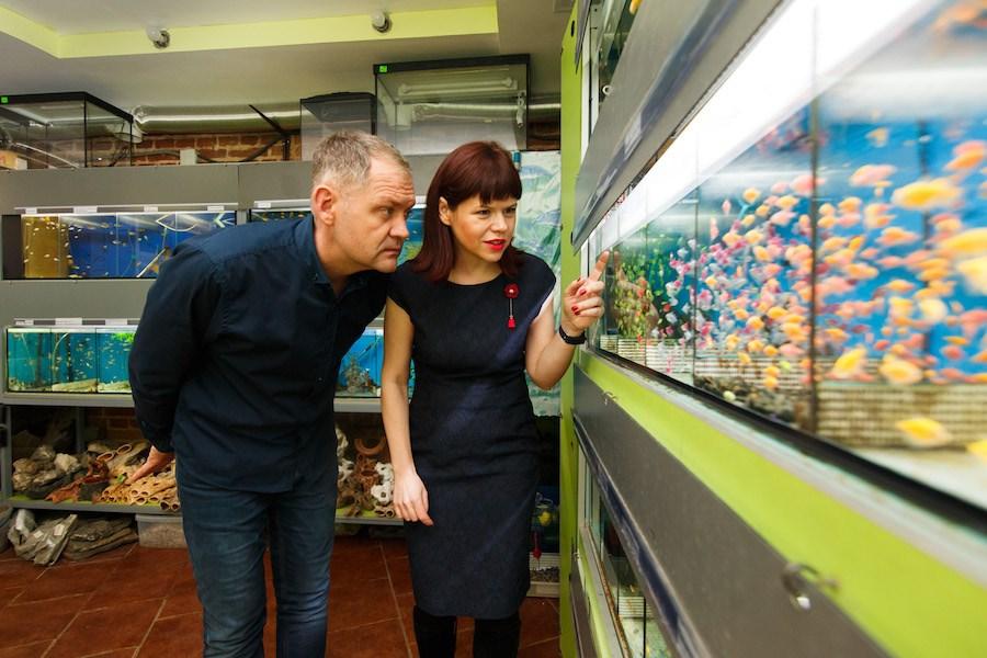 Нова стаття про те, як правильно лікувати рибок.