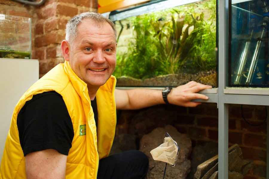 Дізнайтеся, як видалити водорості з акваріуму!